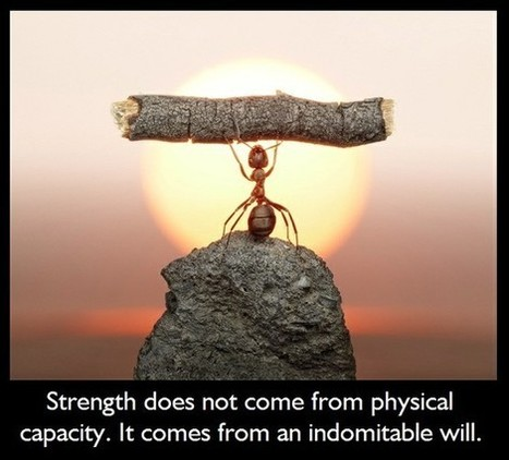 Strength... | Quote for Thought | Scoop.it