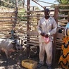 Linking small holder farmers to markets