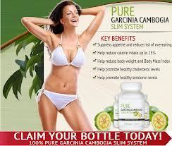 Get a Slim and Healthy Body-Pure Garcinia Cambogia Slim System | Weight Loss Supplement Gives You Slim and Gorgeous Body | Scoop.it
