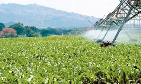 Maroc: La croissance économique dopée par le secteur agricole | MED-Amin | Scoop.it