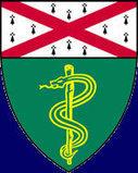 Anatomy Clinic, Yale School of Medicine |Human Anatomy and Development| | All Regions | Scoop.it