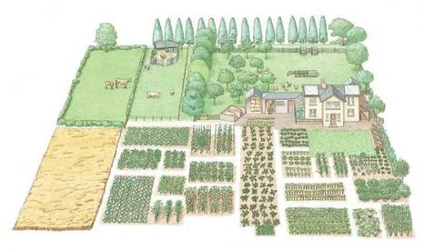 Start a 1-Acre, Self-Sufficient Homestead - Modern Homesteading - MOTHER EARTH NEWS | Modern-Day Homesteader | Scoop.it