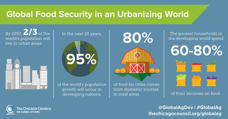 Growing Food for Growing Cities: Food Security in an Urbanizing World | Chicago Council on Global Affairs | Human Geography | Scoop.it