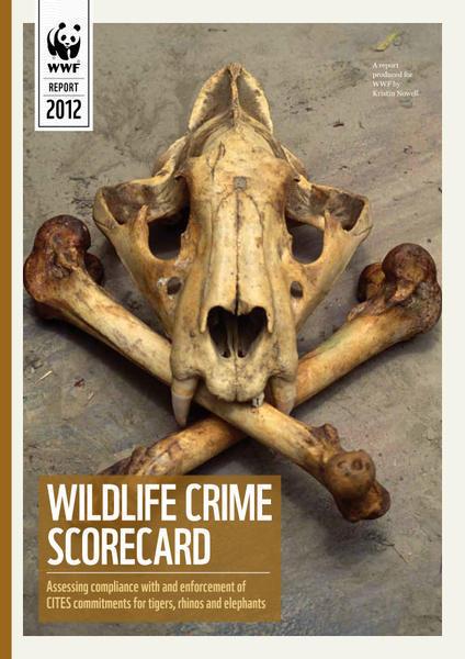 Trafic d'espèces: de nombreux pays sont à la traîne   BIODIVERSITÉ - WWF   Scoop.it