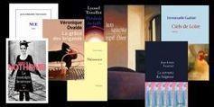 Première moisson parmi les 555 romans attendus à la rentrée littéraire 2013 | De la plume au clavier | Scoop.it