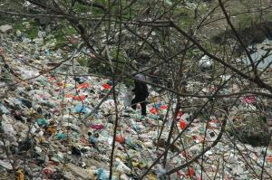Plasticity Forum – Rio+20 Earth Summit – The Future of Plastic, and Where the Leaders areGoing | All about water, the oceans, environmental issues | Scoop.it