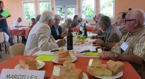 Salon de l'Agriculture : Le maroilles ne fait pas un fromage de ses médailles   The Voice of Cheese   Scoop.it