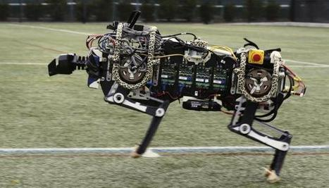 Fast, faster, fastest: This cheetah robot can run at 16 kph | Heron | Scoop.it