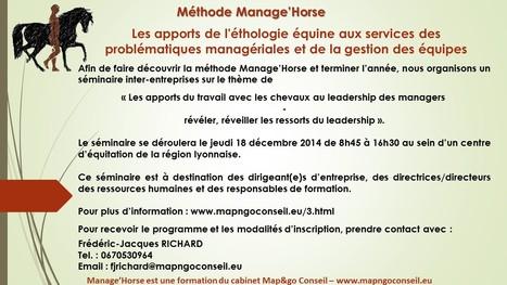 Le cheval et le manager...   Management et Stratégie   Scoop.it
