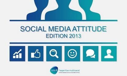 Opt'in & Marketing: Ou en sont les usages des réseaux sociaux en France ? | Evénementiel Culturel | Scoop.it