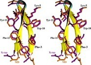 As good as it gets? Folding molecular dynamics simulations of the LytA choline-binding peptide result to an exceptionally accurate model of the peptide structure   bioinformatics   Scoop.it