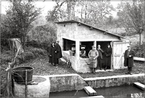 Ménigoute : pêche à l'étang des Châtelliers | Deux-Sèvres | Scoop.it