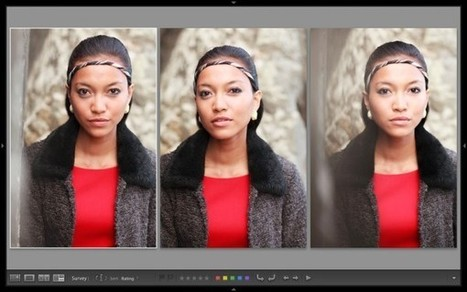 Comparing Images with Lightroom 5's Survey View | Lightroom Tools | Scoop.it