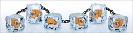 Controllo temperatura: cold chain in primo piano - Blog Magiant | Magiant - electronic design | Scoop.it