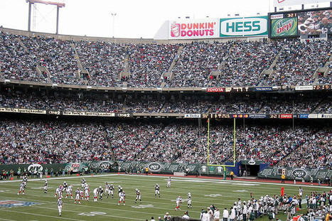 Pro-sports environmental initiatives: Will fans go green too? | Sports Sustainability | Scoop.it