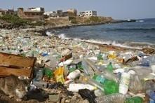 Unerforschter Kontinent aus Plastikmüll im Pazifik - DIE WELT | öko | Scoop.it