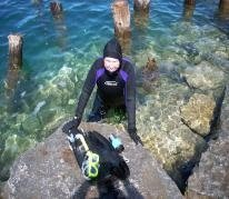 Kathy Dowsett | The Scuba News | All about water, the oceans, environmental issues | Scoop.it