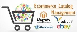 NetSuite Website Ecommerce Development Services India | www.ecommercedatasolution.com | Scoop.it