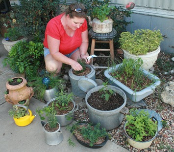 Short on space? Consider a container garden | Container Gardening | Scoop.it