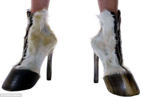 10 Crazy Shoes You Won`t Believe People Actually Wear | General News And Stories | Scoop.it