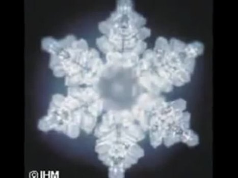 Dr. Masaru Emoto, author of Messages From Water, interviewed by Mike Adams, the Health Ranger - NaturalNews.tv | The Basic Life | Scoop.it