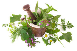 Grow Your Own Medicinal Herbs - The Ready Store | Sustainable Living | Scoop.it
