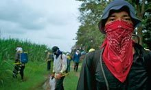 What is killing sugar-cane workers across Central America? | Pesticides ingestible | Scoop.it