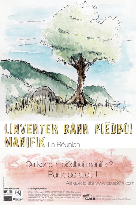 Participer à l'inventaire des arbres remarquables de La Réunion | Habiter La Réunion | Scoop.it