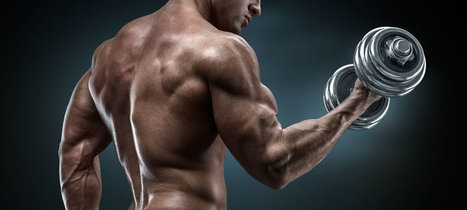The Friday Night Muscle Workout   Health and Fitness News and Reviews   Scoop.it