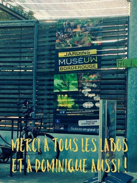 CNRS/Museum de Toulouse - Kiosque-actus « De la graine à la plante » - Jardins du Museum à Borderouge le 05/06/16 | Actualité des laboratoires du CNRS en Midi-Pyrénées | Scoop.it