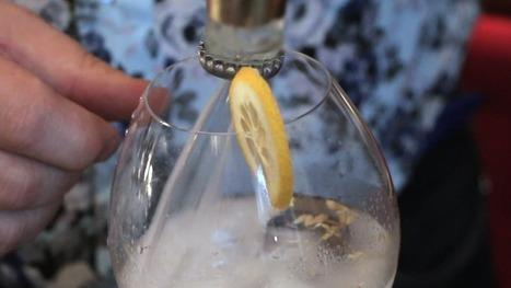 Gin is the new Rhum ! - RTBF Detente | Marketing et Stratégies des Vins et Spiritueux | Scoop.it