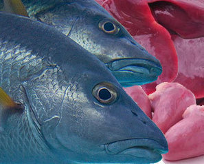 COLOMBIA - Chicken offals considered profitable and ecological fish feed   Food   Scoop.it