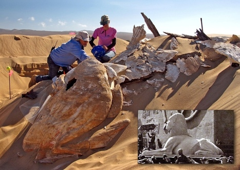 Early 20th C. Sphinx Recovered in California - Archaeology Magazine   Bibliothèque des sciences de l'Antiquité   Scoop.it