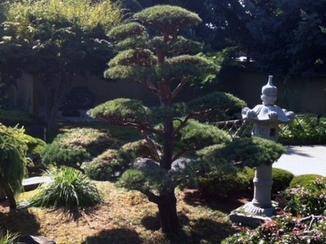 Kasugai Gardens will close its doors for the winter Nov. 1. - Castanet.net | Japanese Gardens | Scoop.it