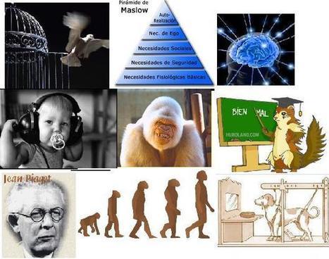 psidesarrollo2equipo9 - Tema 5. Desarrollo social y emocional. Identidad y moral.   Identidad 0-6   Scoop.it