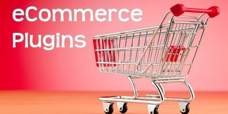10 WordPress Plugins for eCommerce - Small Business Trends | Wordpress Themes 2014 | Scoop.it