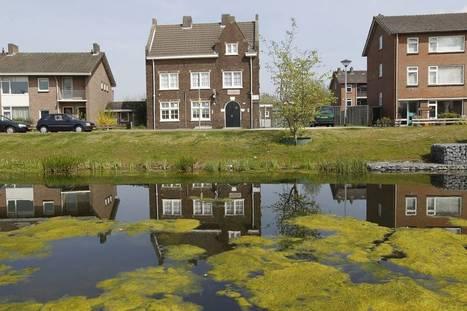 Buurthuis 2.0 als hart van de buurt - Eindhovens Dagblad | Netwerksamenleving - e-participatie, hnw, informatie 2.0, community, social media | Scoop.it