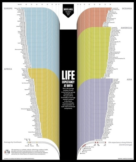 Life Expectancy at Birth - Blog About Infographics and Data Visualization - Cool Infographics | Infographics | Scoop.it