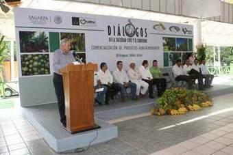 Manzanillo TV: Fomenta gobierno de Mario Anguiano desarrollo de cadenas productivas | Clusters y Cadenas Productivas | Scoop.it