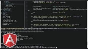 Validations Class - AngularJS Video Tutorial #pro | Nova Tech Consulting S.r.l. | Scoop.it