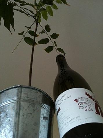 Gammes d'été | Le meilleur des blogs sur le vin - Un community manager visite le monde du vin. www.jacques-tang.fr | Scoop.it
