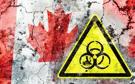 Flu symptoms 2014: H5N1 bird flu death in Canada | stomach flu symptoms | Flu symptoms 2013: Treatment of flu! Flu epidemic prevention! | Scoop.it