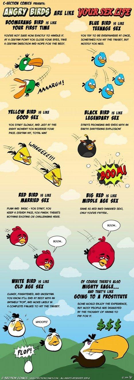 Et si les Angry Birds étaient le reflet de votre vie sexuelle ...   Angry Birds   Scoop.it