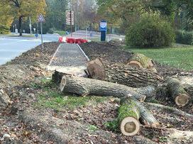 Un trottoir vers nulle part ou comment creuser les déficits et le sol simultanément | Brèves de scoop | Scoop.it