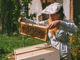 Beekeeper Expands Urban Farming Project After Tough First Year - DNAinfo.com Chicago | Vertical Farm - Food Factory | Scoop.it
