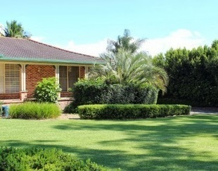 Lawn Turf Suppliers and Lawn Maintenance: Ways Turf Suppliers Sydney can make you Rich? | Sydney Turf Supplier | Scoop.it