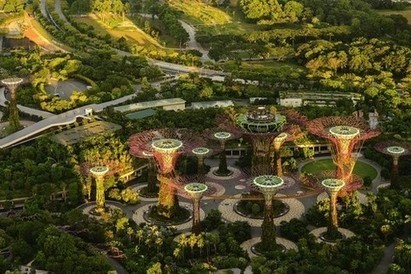 Greener cities are best at taming urban heat   News   Eco-Business   Asia Pacific   Urbanisme   Scoop.it