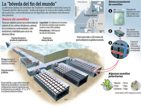Conoce El Arca de Noé del S. XXI. | Agua | Scoop.it
