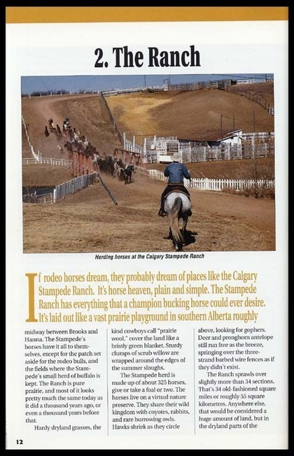 Viewing page The Ranch of Calgary Stampede and the Canadian West   Calgary Stampede Through the Years   Scoop.it