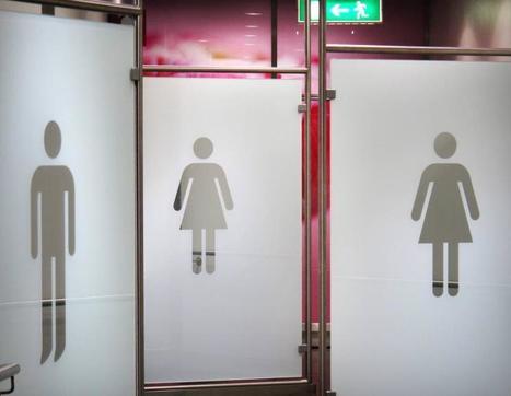 Sukupuolivähemmistöjen oikeuksia kohennetaan | Ihmettelyä | Scoop.it